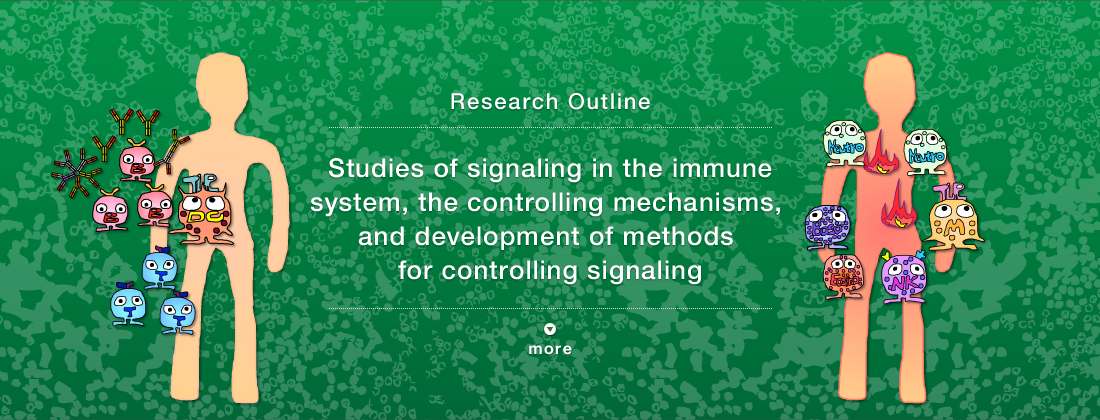 Research Outline Manipulating the immune response by controlling signal transduction to fight autoimmune diseases, infection and cancer